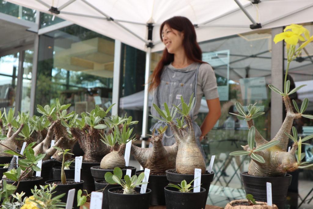 代官山 植物イベント